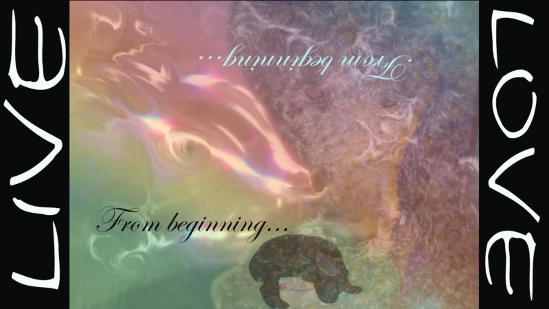 From Beginning - From Beginning